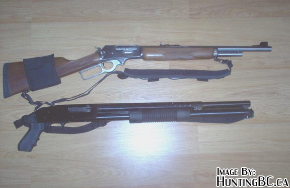 Close-quarters Bear Gun? [Archive] - HuntingBC ca